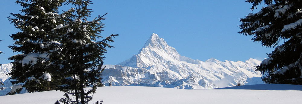 Great views of the Swiss mountains // Photo: Beatenberg Tourismus